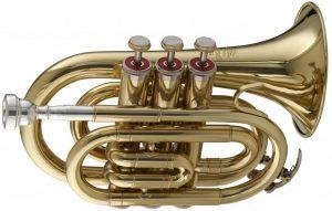 golden pocket trumpet