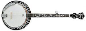 best banjos 2020