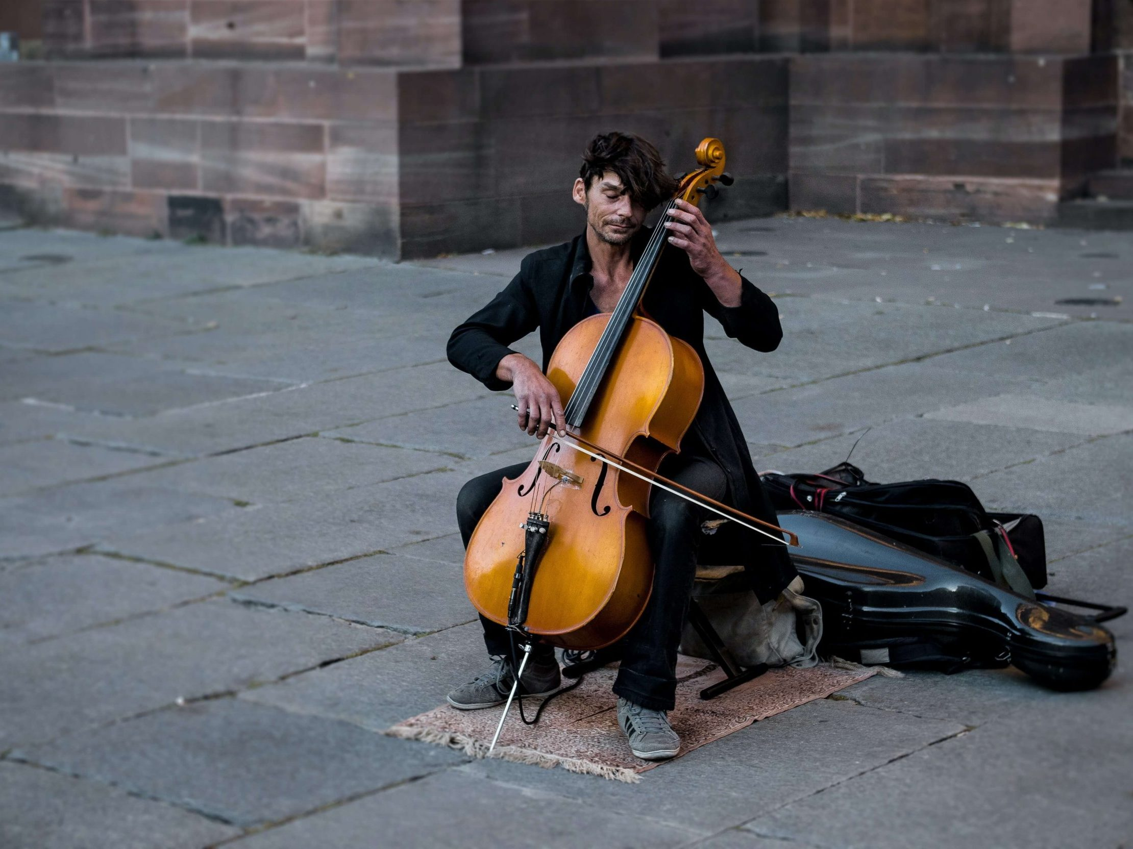 affordable cello